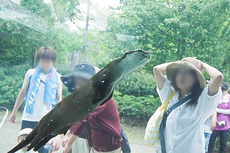 tokushima120805259