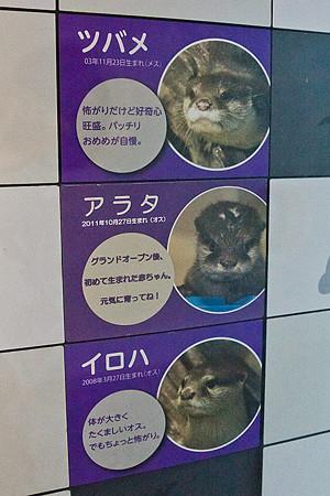 miyajima121002003