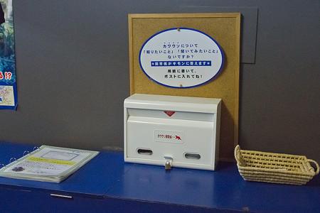 echizen121209009