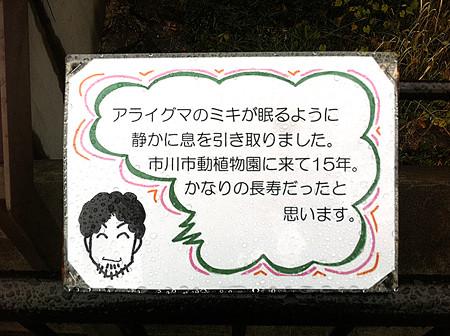 ichikawa121123999