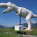 Photos: 和紙恐竜