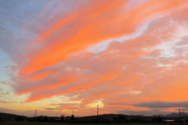Photos: サーモンピンクの鱗雲