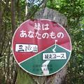 この道は縦走路です