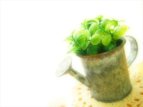 Photos: watering pot