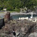 八幡野港の堤防