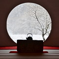Photos: 雪の明月院