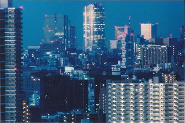 朝青(5)