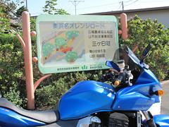 IMG_5178 奥浜名オレンジロード