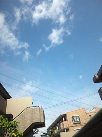 SH3I0448 雨は?