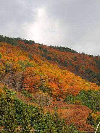 IMG_7181 飛騨小坂大ゾレ山 赤い