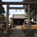Photos: 八幡神社 2014.3/25