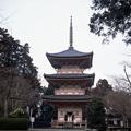 写真: 真禅院 三重塔
