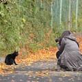Photos: ニャンコと私(11/18)