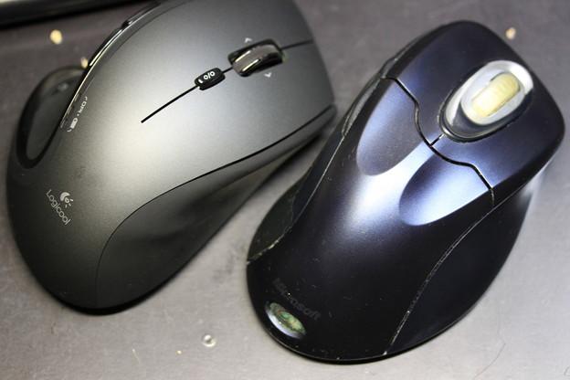 マウスの世代交代