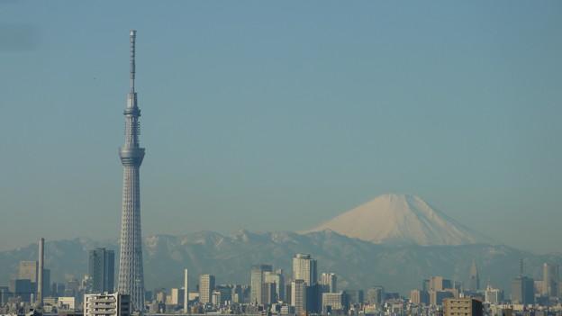 朝の東京スカイツリーと富士山