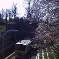 四ツ谷の桜の下を…