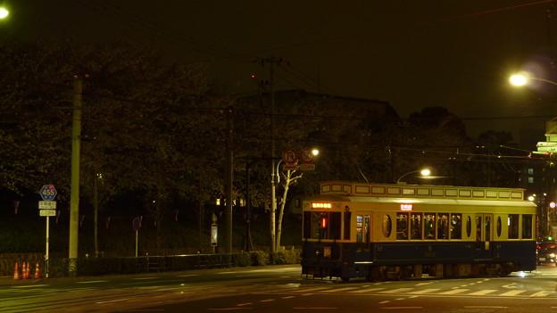 飛鳥山公園の夜桜と、レトロ車両