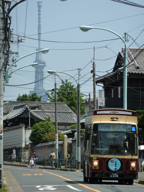 Photos: 谷中・三崎坂