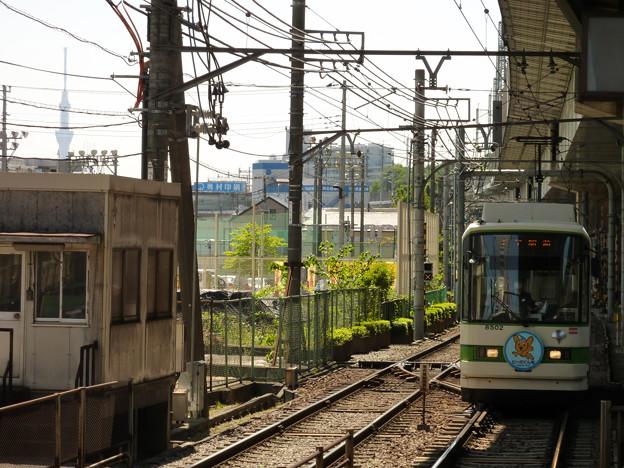 写真: 王子駅前電停から