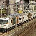 Photos: JR東日本185系