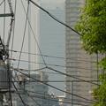 Photos: 白い巨塔