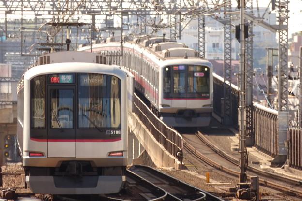 Photos: 武蔵小杉駅ホームにて(1)