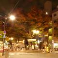 Photos: 秋のパティオ十番