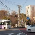 Photos: 音無橋交差点にて
