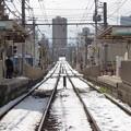 写真: 残雪ある専用軌道