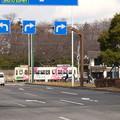 Photos: バス待ちの合間?