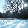 写真: 201212-03-018PZ