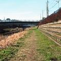 写真: 201302-03-003PZ