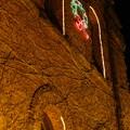 クリスマスの明治館 (3)