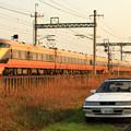 Photos: 愛 車
