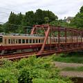 Photos: 新緑に囲まれる鉄橋