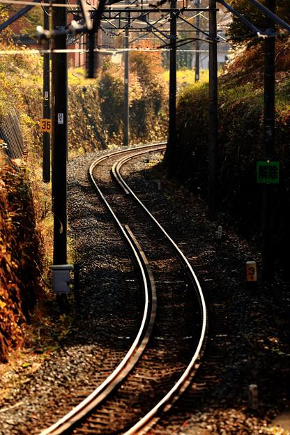 木漏れ日の鉄路