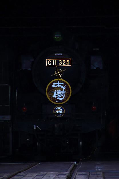 C 11 325
