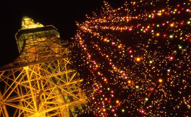 Photos: 00-12 東京タワー-2