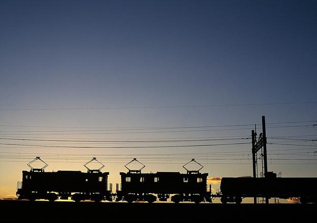 Photos: 夕暮れの貨物列車
