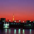 Photos: 97-2 勝鬨橋