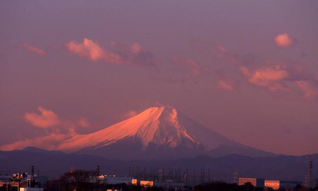 01-12 栗橋町 利根川より