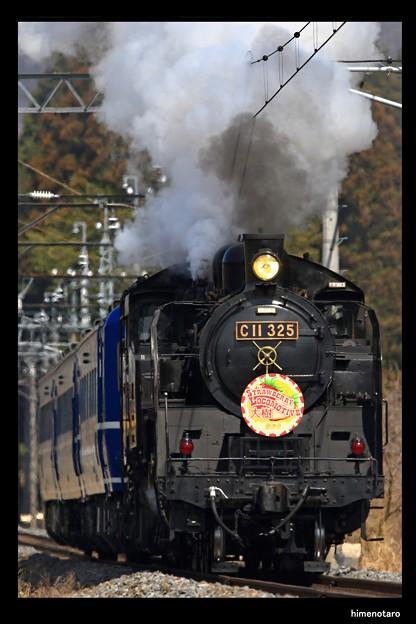 SL大樹 Strawberry Locomotive