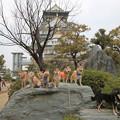柴犬オフ会2014(大阪城公園)