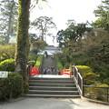 Photos: 常盤木門へ