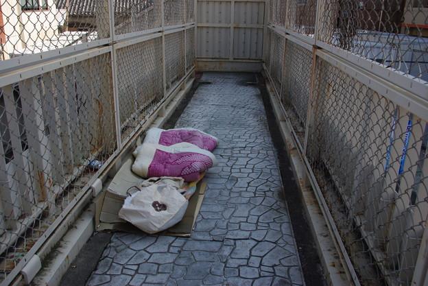 歩道橋の寝床