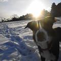 写真: 13・1・20雪遊び1