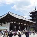 興福寺東金堂・五重塔