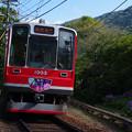 箱根登山鉄道1000形
