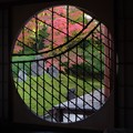 光明院の悟りの窓