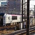 Photos: E259系成田エクスプレス